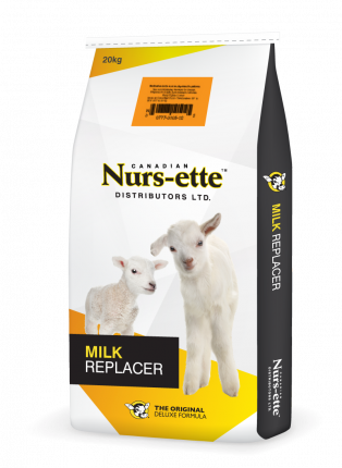 Lamb Milk Replacer
